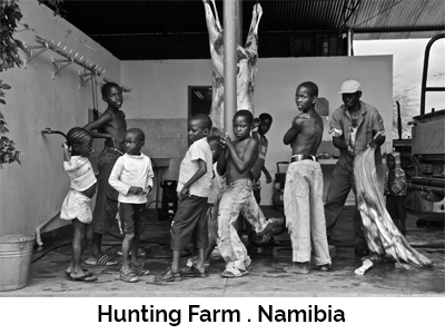 Hunting Farm . Namibia