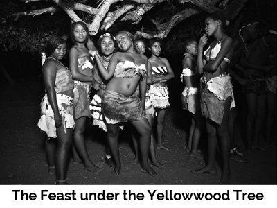 The Feast under the Yellowwood Tree