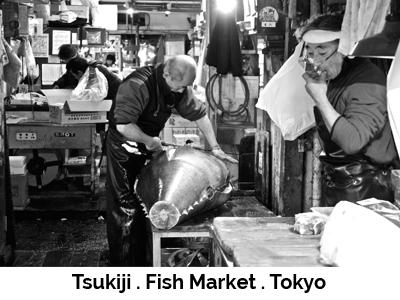 Tsukiji . Fish Market . Tokyo
